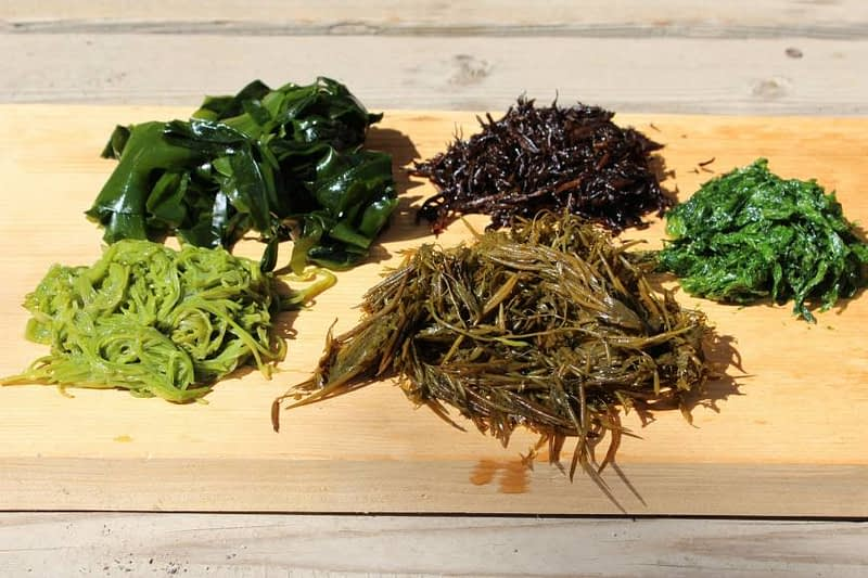 different types of seaweeds on a butcher block