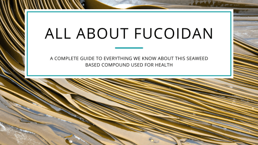 Fucoidan blog cover